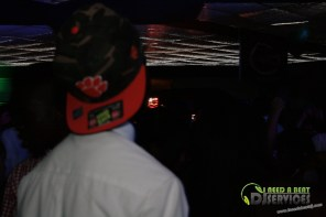 Ware County High School Homecoming Dance 2013 Mobile DJ Services (313)