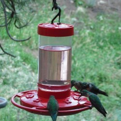 First Nature 3051 Hummingbird Feeder