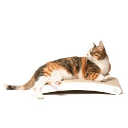 BASICS Collection Curve Scratching Pad 4CLAWS Curve Scratching Pad (White) - BASICS Collection Cat Scratcher.
