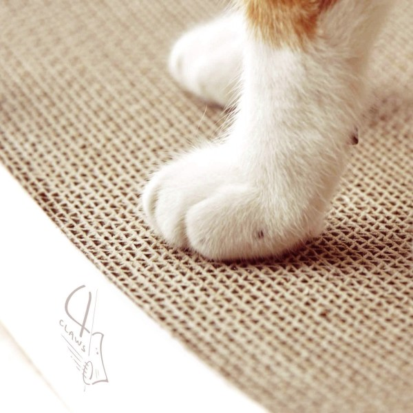 BASICS Collection Curve Scratching Pad