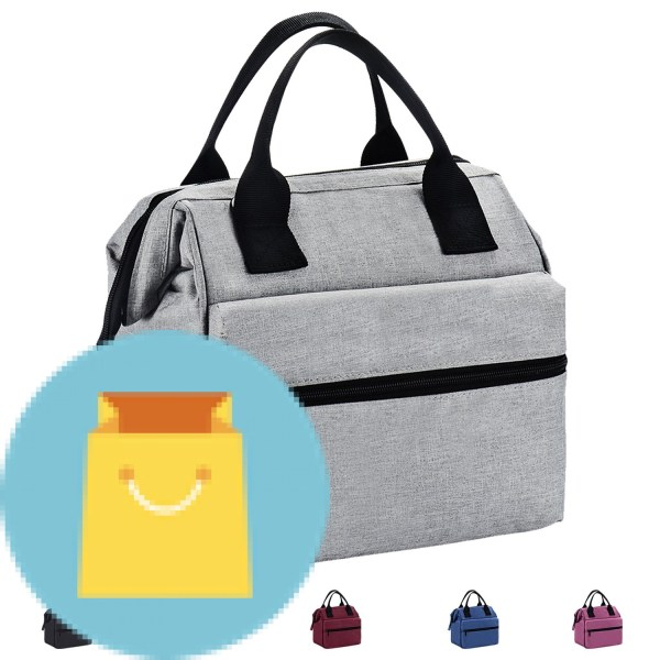 Srise Lunch Box Insulated Lunch Bag For Kids & Adults