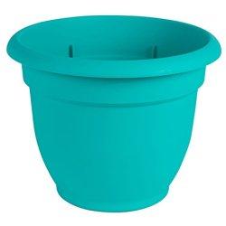 "Bloem Ariana Self Watering Planter, 6"", Calypso"
