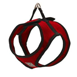 RC Pet Products Step in Cirque Soft Walking Dog Harness