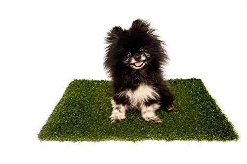 "Best Pet Turf | The #1 APPROVED Replacement Artificial Grass Patch for PetMaker 20"" x 25"" Tray 