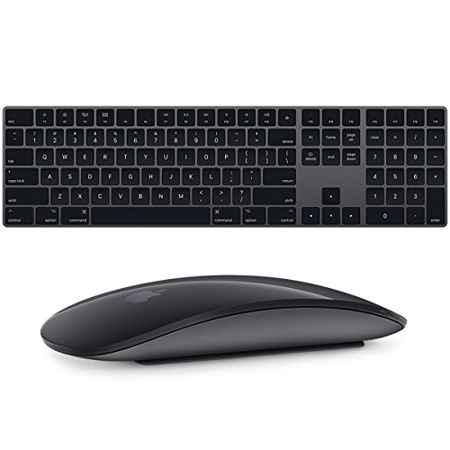 Apple Magic Keyboard with Numeric Keypad and Magic Mouse 2 (Space Gray)