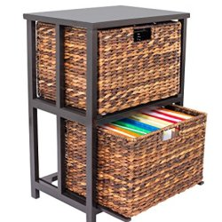 BirdRock Home Abaca 2 Tier File Cubby Cabinet