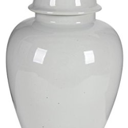 A&B Home Ginger Jar, 13.3 by 23-Inch