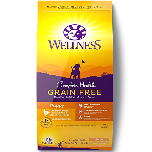 Wellness Complete Health Natural Grain Free Dry Puppy Food