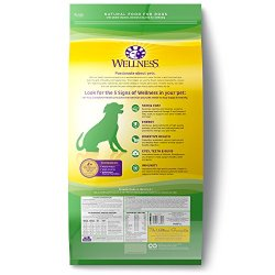 Wellness Complete Health Natural Dry Dog Food, Lamb & Barley Wellness Complete Health Natural Dry Dog Food, Lamb & Barley, 30-Pound Bag.
