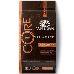 Wellness Core Natural Grain Free Dry Dog Food, Original Turkey
