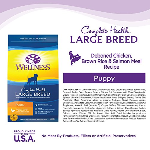 Wellness Complete Health Natural Dry Large Breed Puppy Food Wellness Complete Health Natural Dry Large Breed Puppy Food, Chicken, Salmon & Rice, 30-Pound Bag.