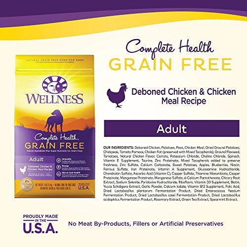 Wellness Complete Health Natural Grain Free Dry Dog Food Wellness Complete Health Natural Grain Free Dry Dog Food, Chicken, 24-Pound Bag.