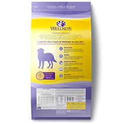Wellness Complete Health Natural Dry Healthy Weight Dog Food Wellness Complete Health Natural Dry Healthy Weight Dog Food, Chicken & Peas, 26-Pound Bag.
