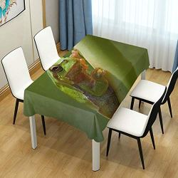 lightly Rectangle Tablecloth,Tree Frog Field Green Washable Polyester Table