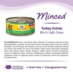 Wellness Complete Health Natural Grain Free Wet Canned Cat Food Wellness Complete Health Natural Grain Free Wet Canned Cat Food, Minced Turkey Entrée, 5.5-Ounce Can (Pack Of 24).