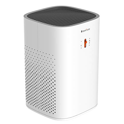 KeenPure Air Purifier with Longlife Cylindrical HEPA Filter, Allergies Eliminator