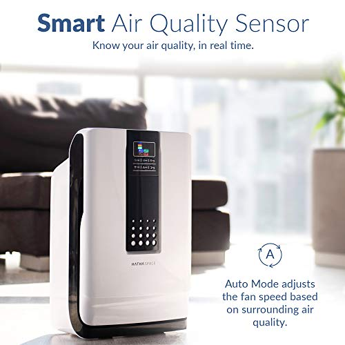 6-in-1 Large Room Air Cleaner & Deodorizer for Allergies Hathaspace Smart True HEPA Filter Air Air purifier (Purificador de aire)