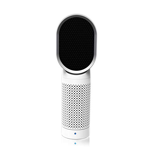 QUEENTY Desktop Air Cleaner with True HEPA Filter - Portable Air Purifier Odor Allergies Eliminator for Smoke, Dust, Mold, Bedroom, Home, Office and Pets (White)