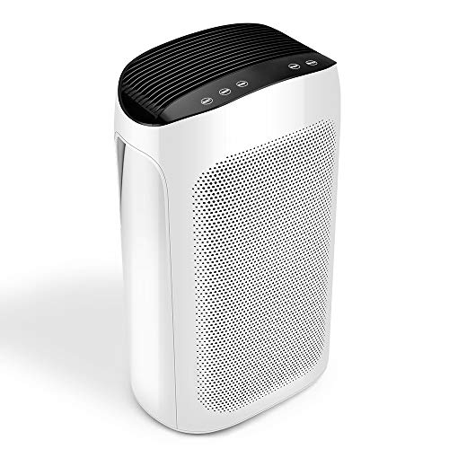 Air Choice True HEPA Purifier, Cleaner for Large Room & Office