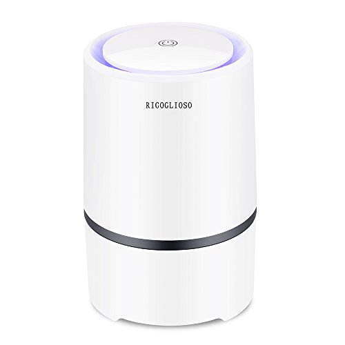 RIGOGLIOSO Air Purifier for Home with True HEPA Filters,Low Noise Portable Air Purifier with Night Light,Desktop USB Air Cleaner