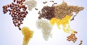Fair trade: Κάθε φορά που ξοδεύεις λεφτά, δίνεις μια ψήφο στο είδος του κόσμου που θέλεις