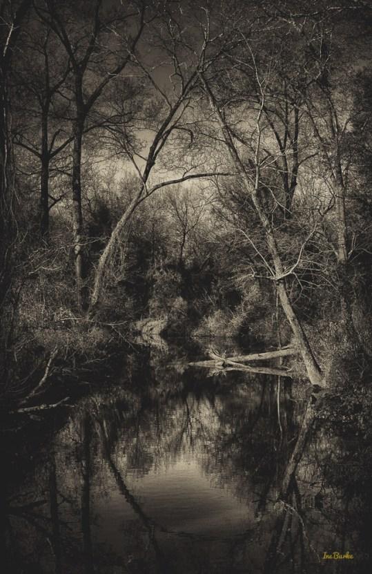 Mill Creek-150106-L1009338_HDR-Edit-4