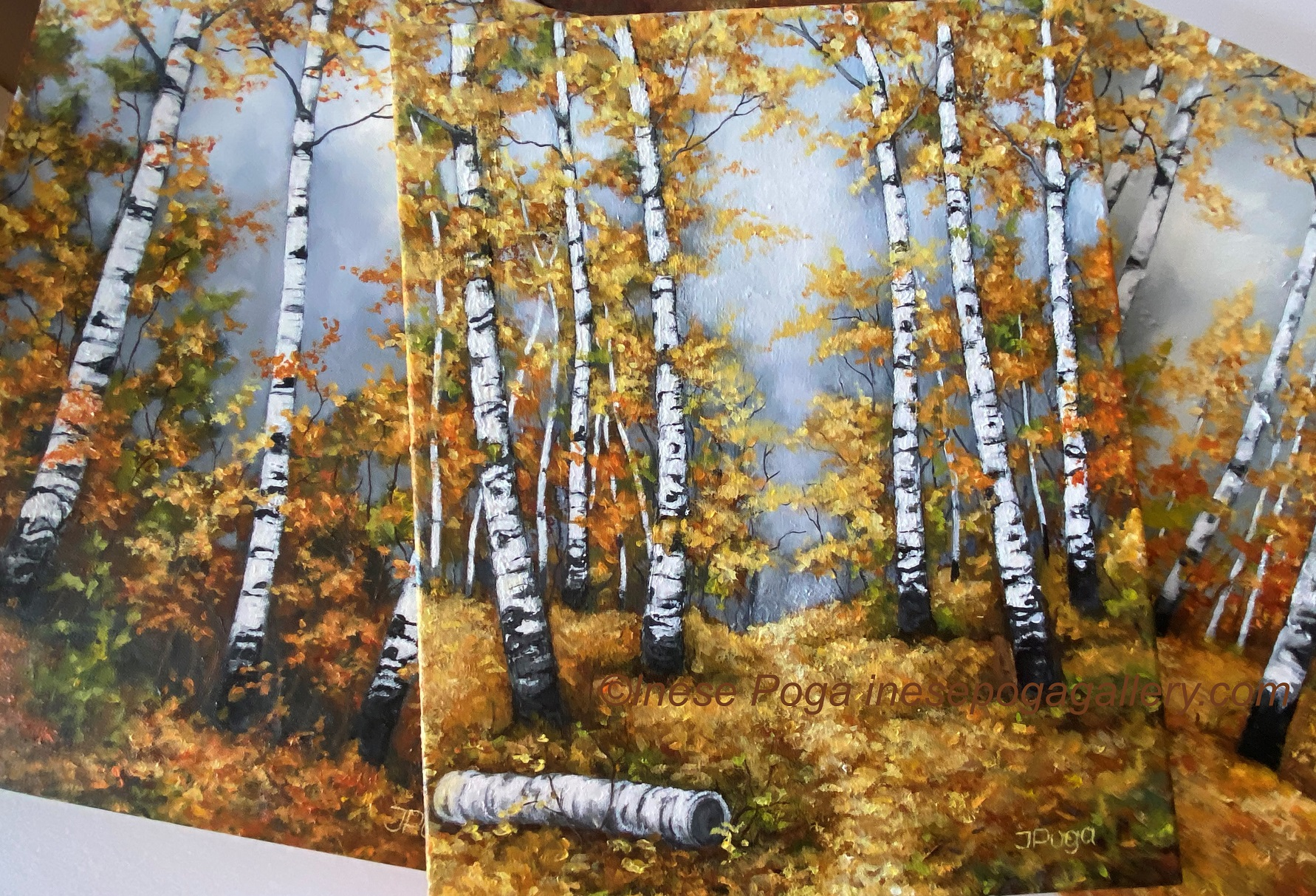 Find inspiration on the birch path