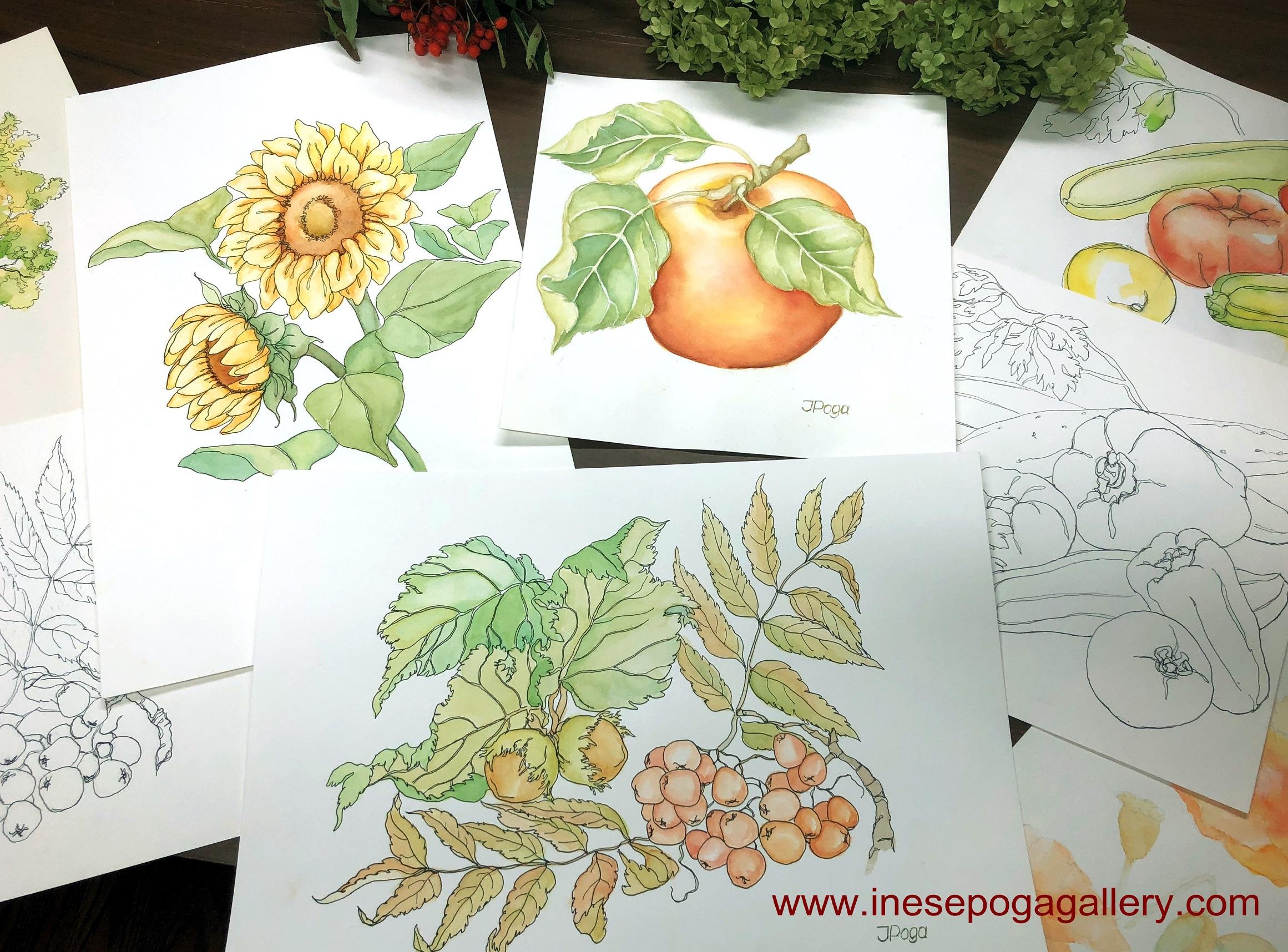 Drawing, watercolor, inspiration