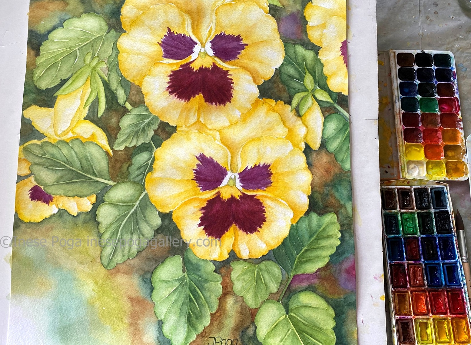 Pansy smiles, once again, and new art classes