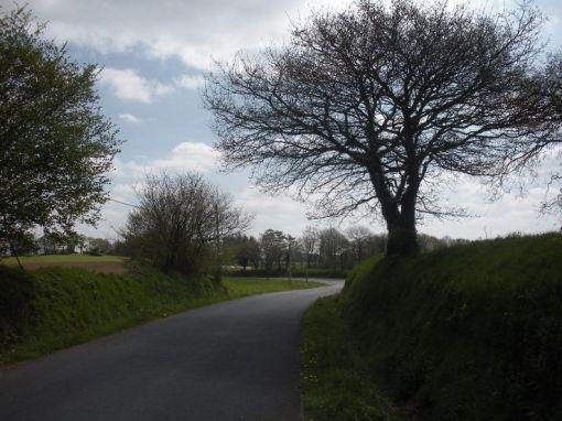 La route de Maël-Pestivien à Coat-Maël