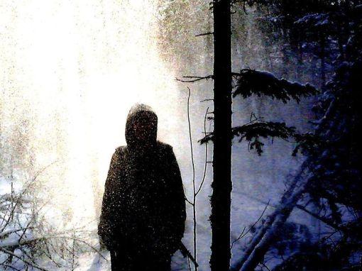 Kostya dans la forêt• Crédits : Marilia Petite
