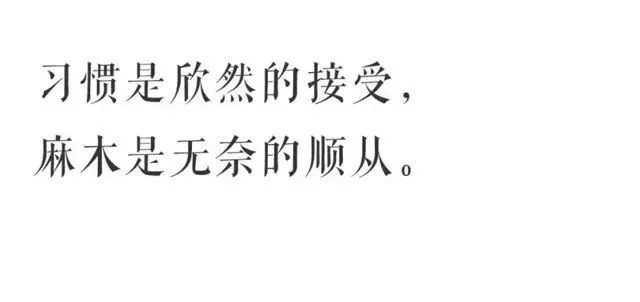 洋葱往事:为什么大多数人宁愿吃生活的苦,也不愿吃学习的苦? 