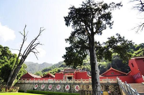 Hai cây bách ở trước chùa do Lai Liễu Quyền tự tay trồng.