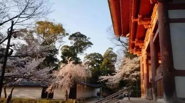 日本居然從中國唐朝「偷」了一個千年古都