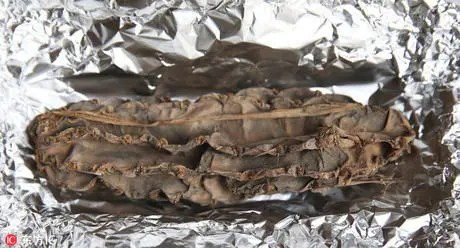 秘魯發現一4000年前仙人掌 長30厘米刺仍清晰可見