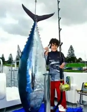 10歲男孩釣到232斤金槍魚 打破世界紀錄