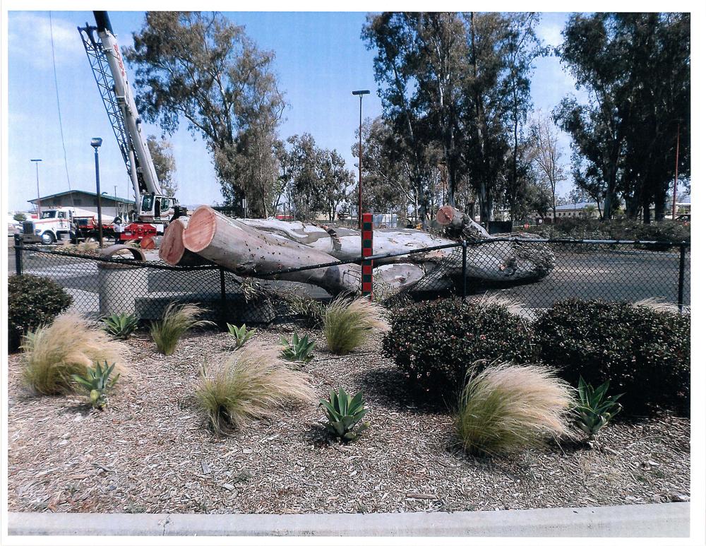 NCTD Crane Accident