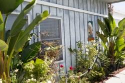 Seaport Driscoll's Cathy's Garden