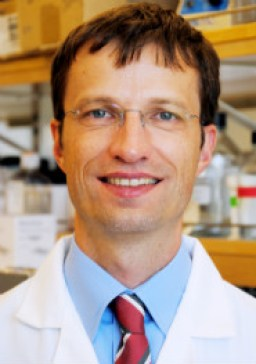 Dr. Bernd Schnabl Schnabl is a professor of medicine at UCSD and attending physician at the San Diego VA.