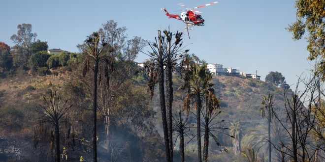 Fire risks tied to homelessness in San Diego's canyons leave residents on edge