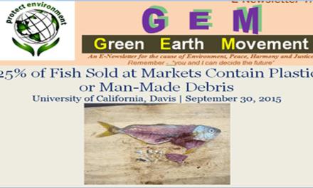 Gem 7-3-plastic in my fish