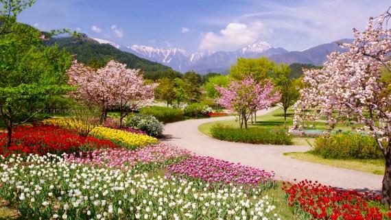 Gebet Frühling