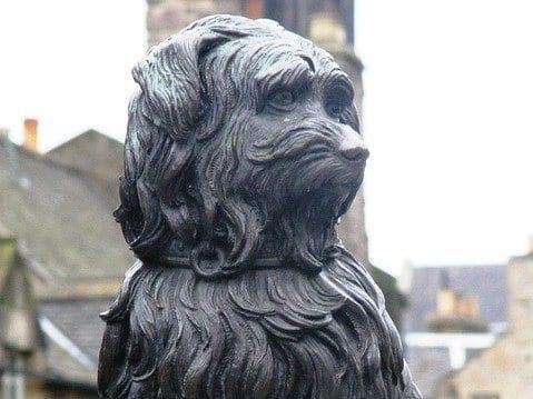 Conoce al perro más leal de Edimburgo – Escocia