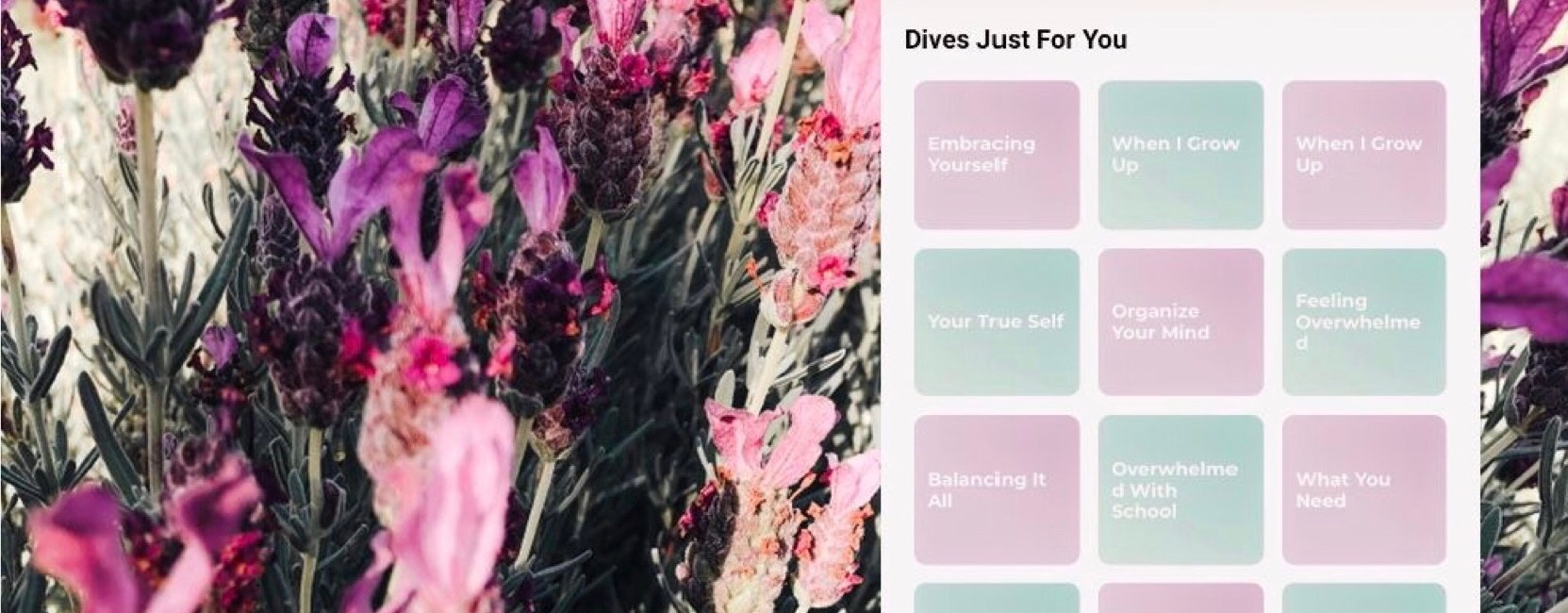 Introducing DiveThru- the newest addition to your wellness routine