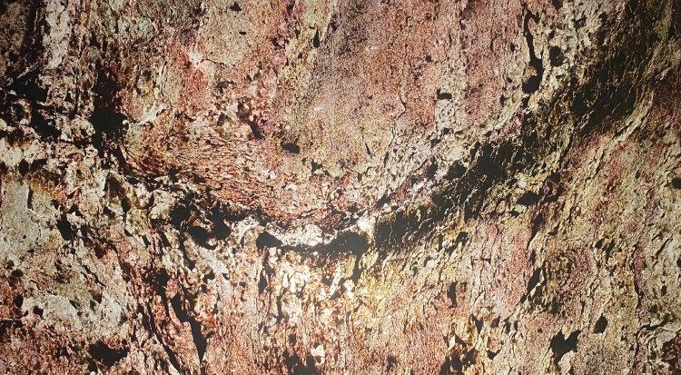 แผ่นหินวีเนียร์ โปร่งแสง Burning Forest โทนชมพู