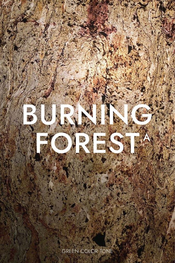 แผ่นหินวีเนียร์ โปร่งแสง Burning Forest โทนเขียว