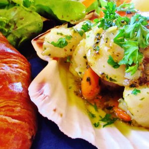 Delicious scallops served in their shell on a tour of west Highlands of Scotland