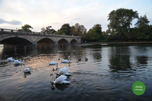 Hyde Park Londres - Que ver en Londres