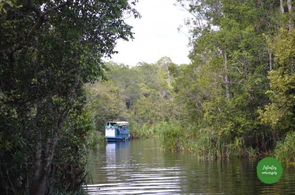 Tanjung Puting  - Viaje a Indonesia en 2 semanas