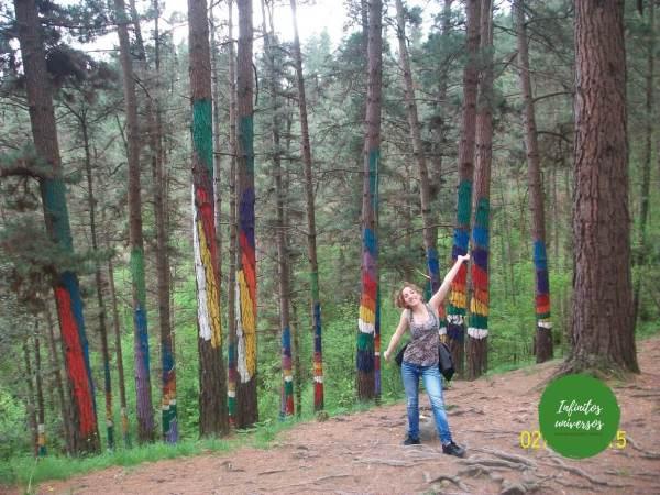 Visita al Bosque de Oma, el bosque pintado de Bizkaia